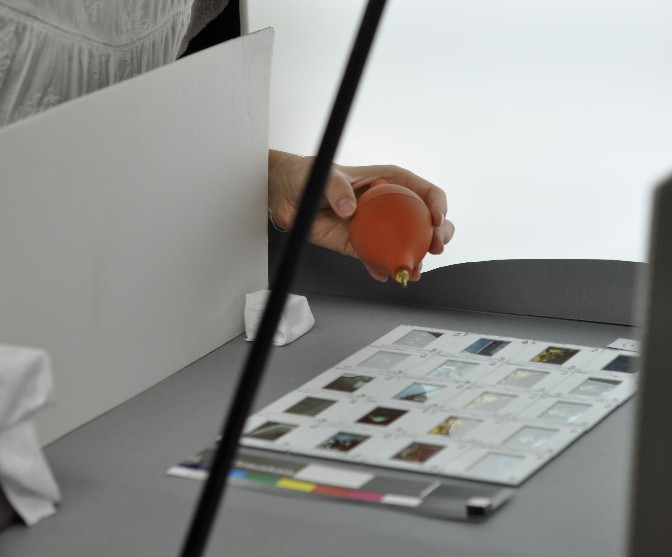 Lisa Herold, Restauratorin in Ausbildung, dokumentiert die Dia-Kunstwerke der Hamburger Kunsthalle. © Hamburger Kunsthalle. Foto: Claartje van Haaften